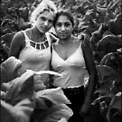 Gipsy Girls-Tobacco Pickers by Stefan Kutsarov