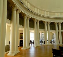 Inside the Rotunda-Columns    ^ by ctheworld