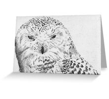 Snowy Owl Etching Greeting Card
