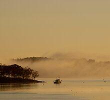 Sunrise Harbor by Tom Allen