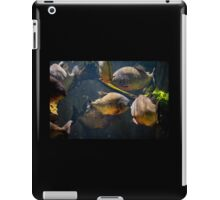 Red bellied hungry piranha iPad Case/Skin