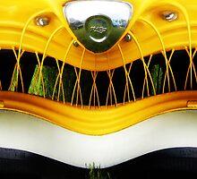 Crazy Smile by Susan S. Kline