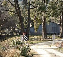 Ye Olde Aussie Shearing Shed by SharonD