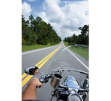Ocala National Forest Photographic Print