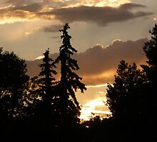 """""""Another Stunning Sunset In God's Country"""" - 5 by dfrahm"""