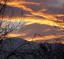 """Colorado Sunset"" by dfrahm"