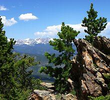 Chief Mountain Summit by Bernie Garland