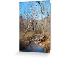 Backroad Stream Greeting Card