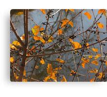 """Orange Leaves, Black Branches"" Canvas Print"