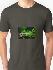 Spotted gar aquarium fishes pair T-Shirt