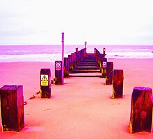 Out to Sea- Magenta by Vincent J. Newman