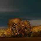 1797 by peter holme III