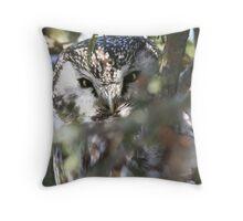 Boreal Owl (Aegolius funereus) Throw Pillow