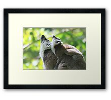 Two minds one thought Framed Print