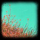 Fly away by sue mochrie