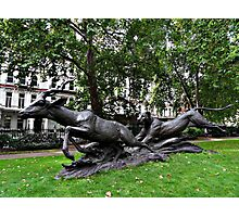 Catch me if you can wild animal statue Photographic Print