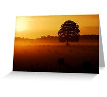 """GOLDEN OAKY"" Greeting Card"