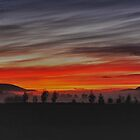 Sunrise at Yering on a winter morning by DivaLyn