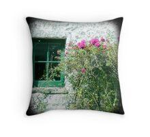 Little barn window Throw Pillow
