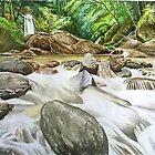 Water & Rocks by seanmerod