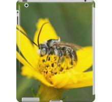 Eucerini Bee on Bidens flower iPad Case/Skin