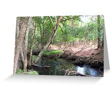 Naturescape 71 Greeting Card
