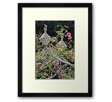 Rose Arch Framed Print