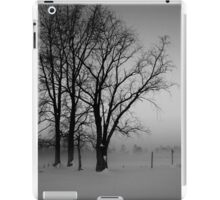 Trees in the Snow iPad Case/Skin