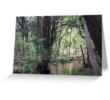 Naturescape 72 Greeting Card