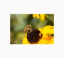 Megachile Bee on Black-eyed Susan Unisex T-Shirt