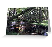 Naturescape 74 Greeting Card