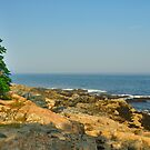 View from Otter Point, Acadia National Park, Bar Harbor, Maine by fauselr