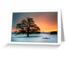 Winter oak and snow Greeting Card