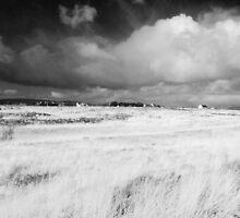 Connemara National Park, Ireland by Ewa Zagorska