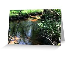 Naturescape 76 Greeting Card