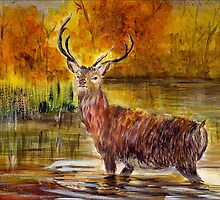 The Stag by Denise Hammond-Webb