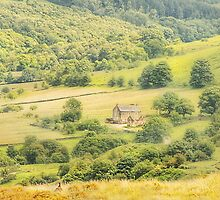 This Green And Pleasant Land by patrixpix