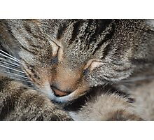 """Charlie dreaming""! Photographic Print"