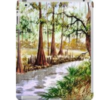 The Sopchoppy River Florida iPad Case/Skin
