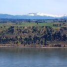 View of Columbia river from Crown Point by delaluna photography