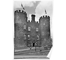 Enniscorthy Castle  Poster