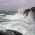 Windy days at Syre, Karmøy by Algot Kristoffer Peterson