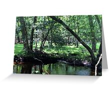 Naturescape 81 Greeting Card