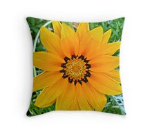 Dazzling Beauty Throw Pillow