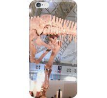 Pretty Mamenchisaurus iPhone Case/Skin