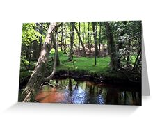 Naturescape 82 Greeting Card