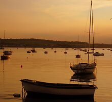 Harbour at Sunset. by celtusone