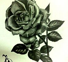 Rose Mohammadi by fatima-abdulla