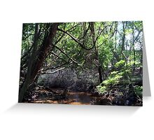 Naturescape 85 Greeting Card