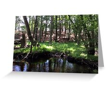 Naturescape 86 Greeting Card